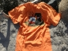 gg-lobster-dog-orange-back-gallery