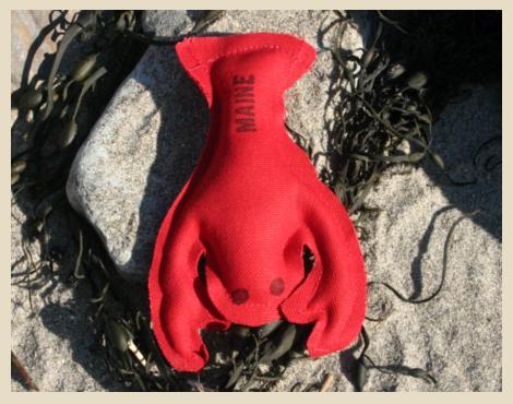 Catnip Lobster Toy, York Beach, Maine