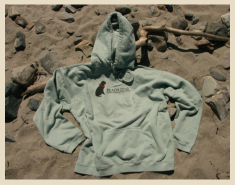 Hooded sweatshirt with classic logo, soft bay color, roomy and comfortable 100% cotton